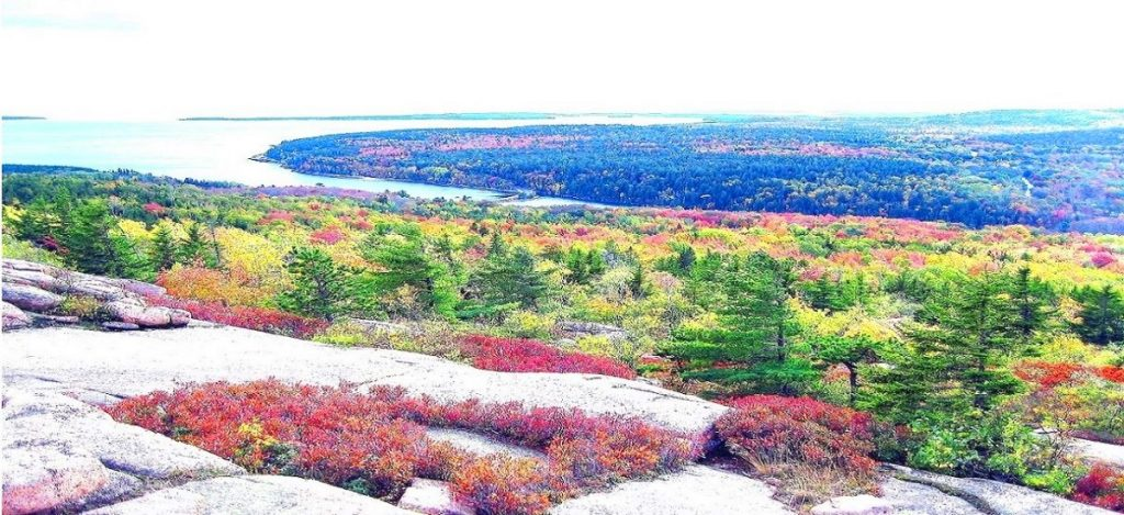 Best Time to Visit Acadia National Park